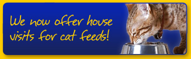 House Visits for Cat Feeds
