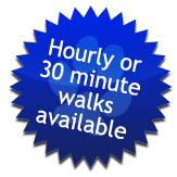 Hourly or 30 minute walks available